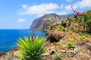 Madeira-vrt Atlantika