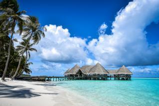 Šrilanka, Maldivi, Dubaj