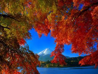 JAPONSKA V BARVAH JESENI 13 dni